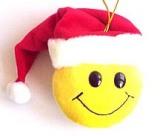 Santa Likes COokies - Individuals