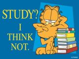 Thou Shall Study Harder... - Academics & Education