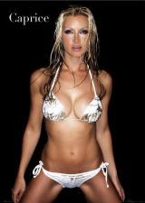 Bikini Lovers - Fashion & Beauty