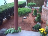 Landscaping and you - Hobbies & Activities