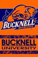 Bucknell University - Alumni & Schools